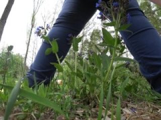 Mature BBW outdoor pissing and hairy pussy POV.